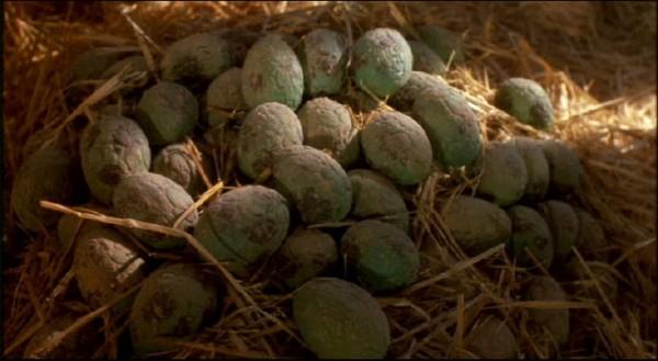 Mam nadzieję, że takich jajek w niedziele nie znajdziecie