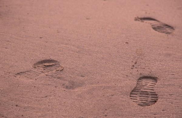 Masa Kultury 99 - czy introwertycy lubią chodzić